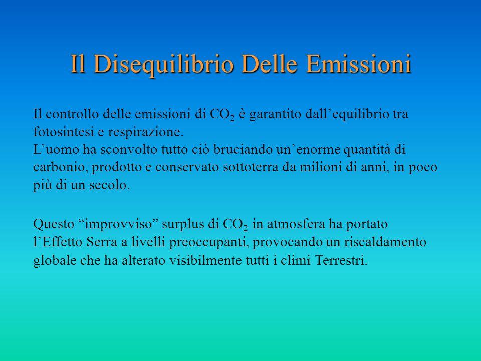 Il Disequilibrio Delle Emissioni Il controllo delle emissioni di CO 2 è garantito dallequilibrio tra fotosintesi e respirazione. Luomo ha sconvolto tu
