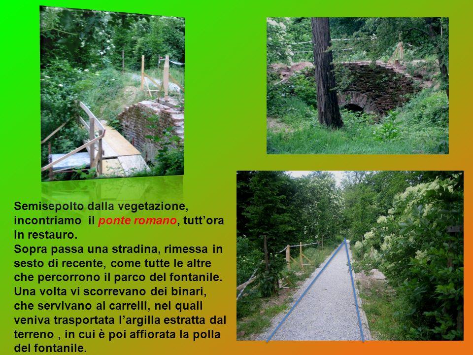 Semisepolto dalla vegetazione, incontriamo il ponte romano, tuttora in restauro. Sopra passa una stradina, rimessa in sesto di recente, come tutte le