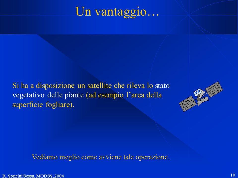 R. Soncini Sessa, MODSS, 2004 10 Un vantaggio… Si ha a disposizione un satellite che rileva lo stato vegetativo delle piante (ad esempio larea della s