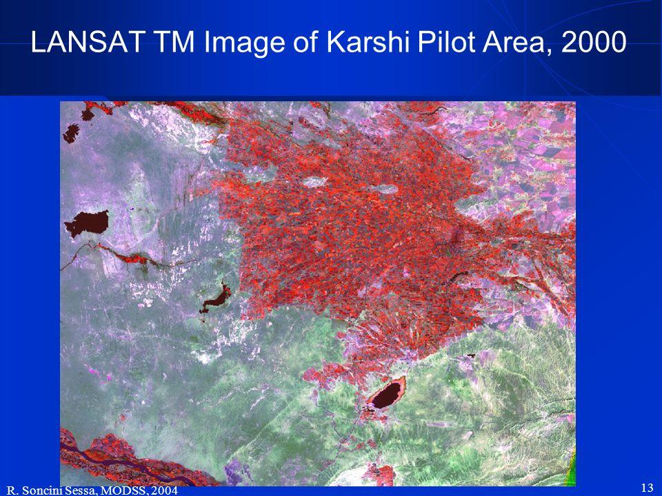 R. Soncini Sessa, MODSS, 2004 13 LANSAT TM Image of Karshi Pilot Area, 2000