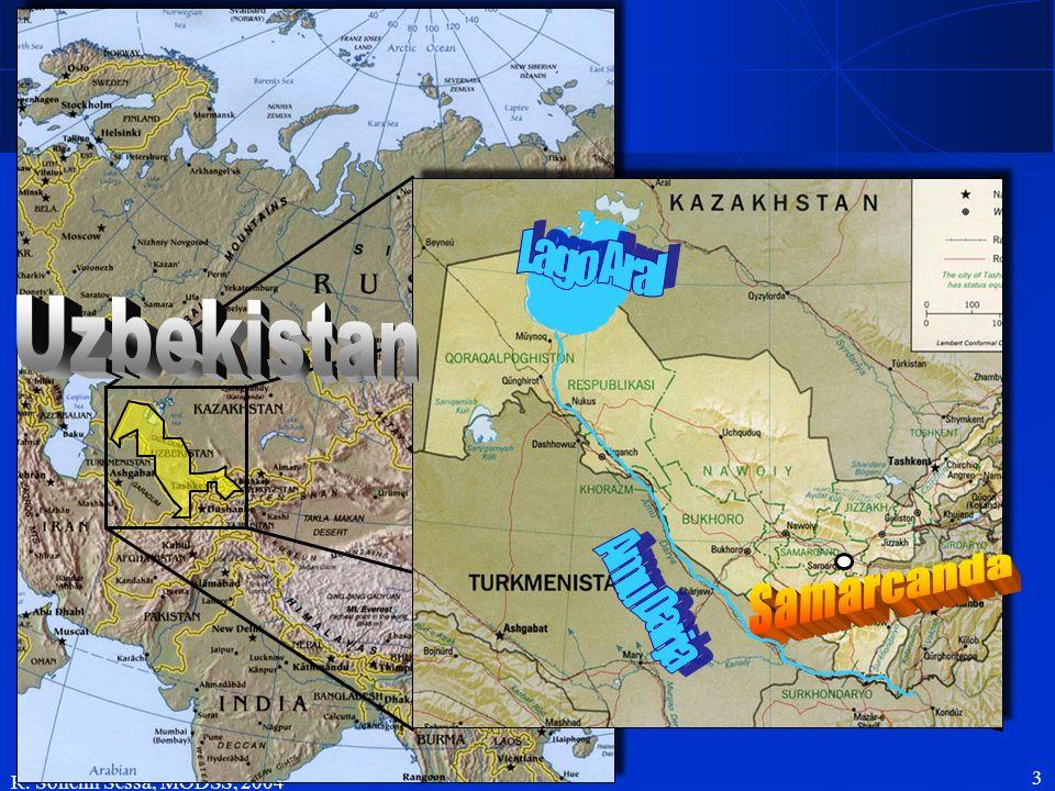 R. Soncini Sessa, MODSS, 2004 14 Kashkadarya Region: salinizzazione del suolo