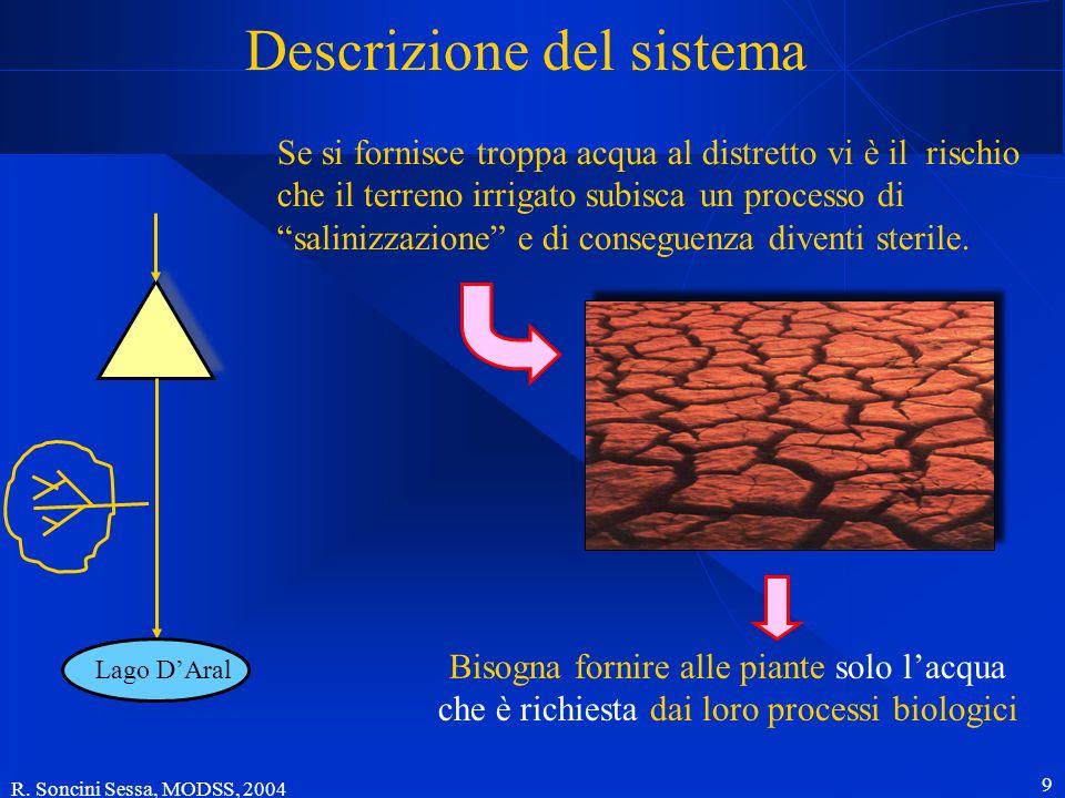 R. Soncini Sessa, MODSS, 2004 9 Descrizione del sistema Lago DAral Bisogna fornire alle piante solo lacqua che è richiesta dai loro processi biologici