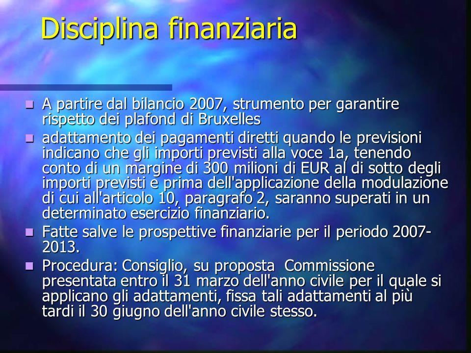 Disciplina finanziaria A partire dal bilancio 2007, strumento per garantire rispetto dei plafond di Bruxelles A partire dal bilancio 2007, strumento p