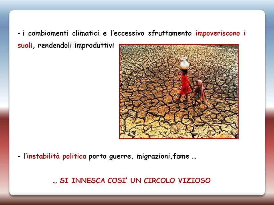- i cambiamenti climatici e leccessivo sfruttamento impoveriscono i suoli, rendendoli improduttivi - linstabilità politica porta guerre, migrazioni,fa
