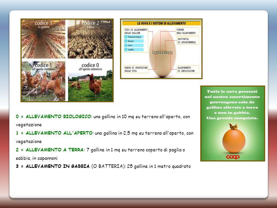 0 = ALLEVAMENTO BIOLOGICO: una gallina in 10 mq su terreno all'aperto, con vegetazione 1 = ALLEVAMENTO ALL'APERTO: una gallina in 2,5 mq su terreno al