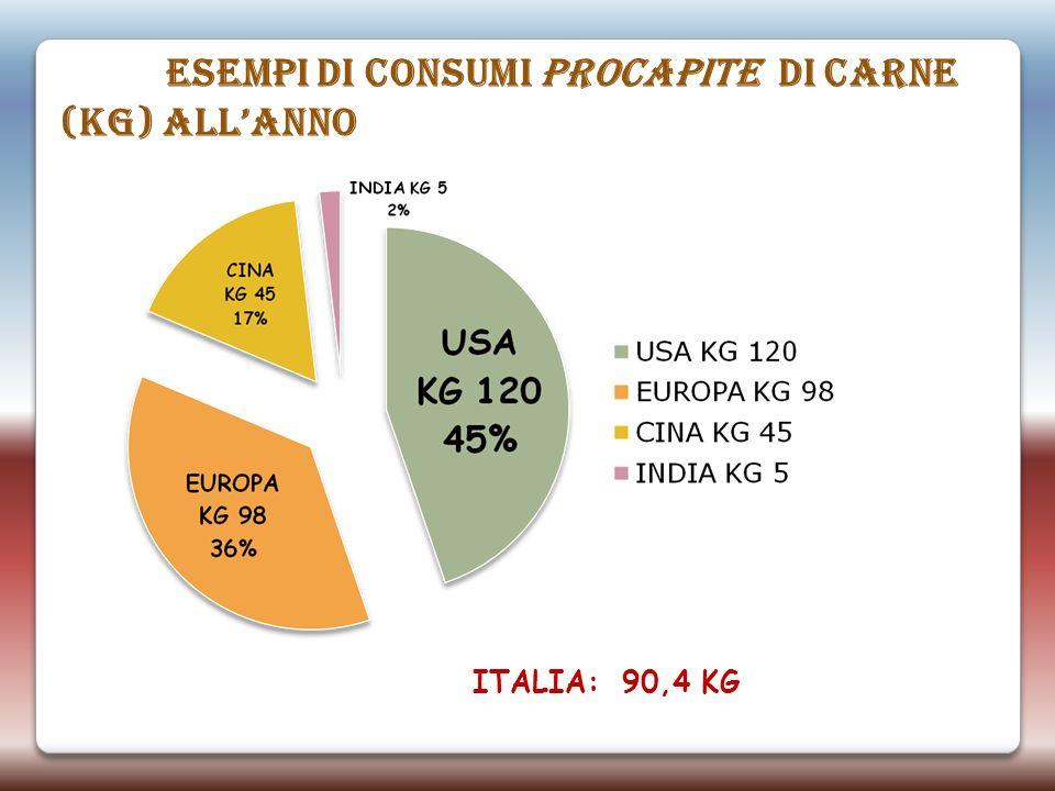 ESEMPI DI CONSUMI PROCAPITE DI CARNE (KG) allANNO ITALIA: 90,4 KG