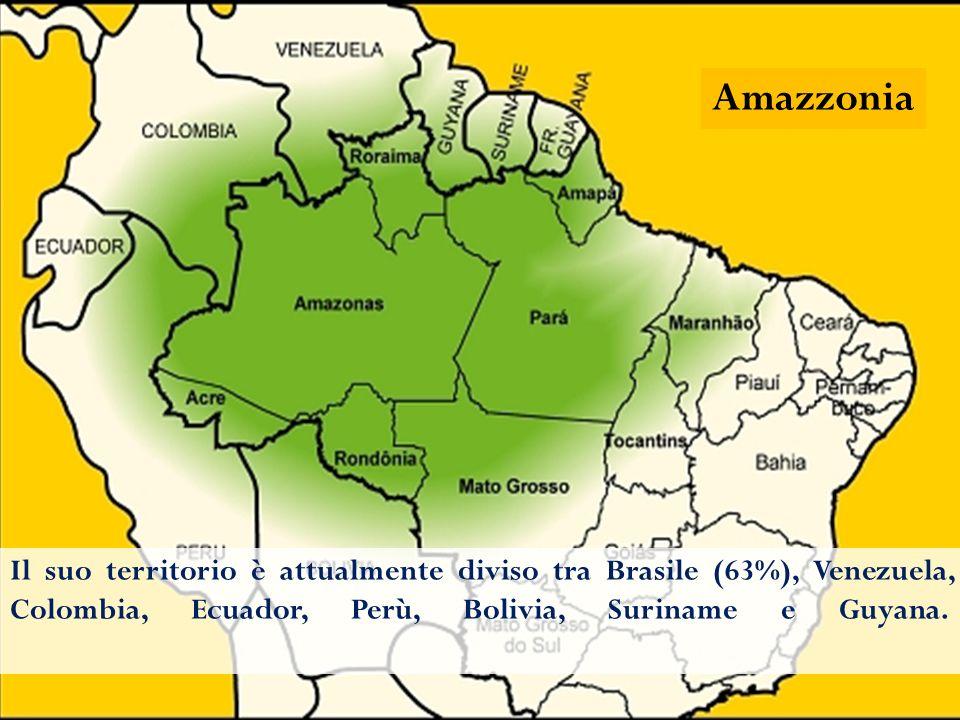 L'Amazzonia è una vasta regione dell'America Meridionale (ca. 3.000.000 di km 2 ) estesa dalle Ande all'Atlantico, costituita dal bacino del Rio delle