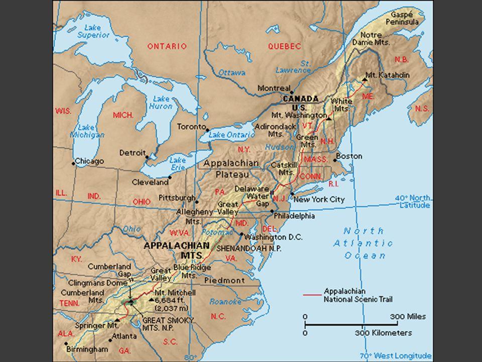 No taxation without representation Dopo il rifiuto di avere rappresentanza nel Parlamento, i coloni danno vita al Boston Tea Party.
