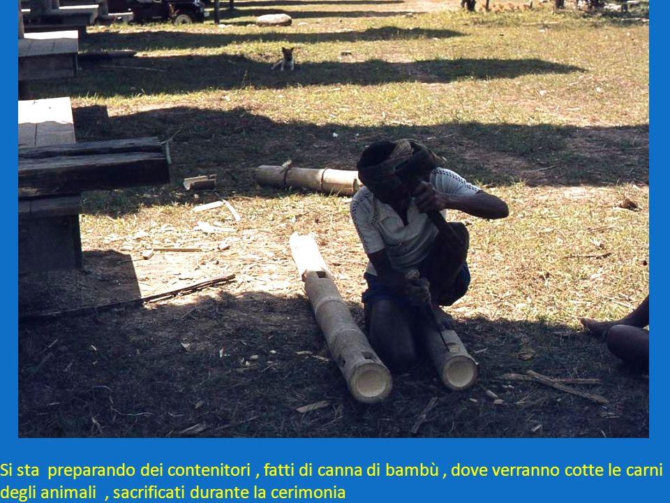 Si sta preparando dei contenitori, fatti di canna di bambù, dove verranno cotte le carni degli animali, sacrificati durante la cerimonia