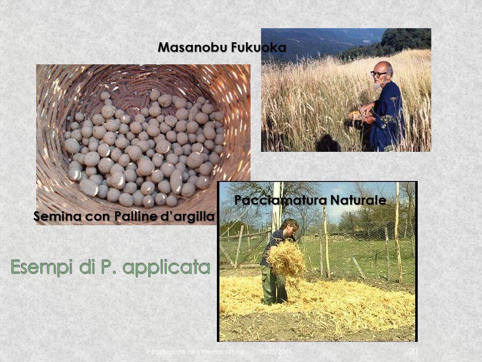 19/02/2011 Introduzione alla Permacultura 20 Masanobu Fukuoka Semina con Palline dargilla Pacciamatura Naturale
