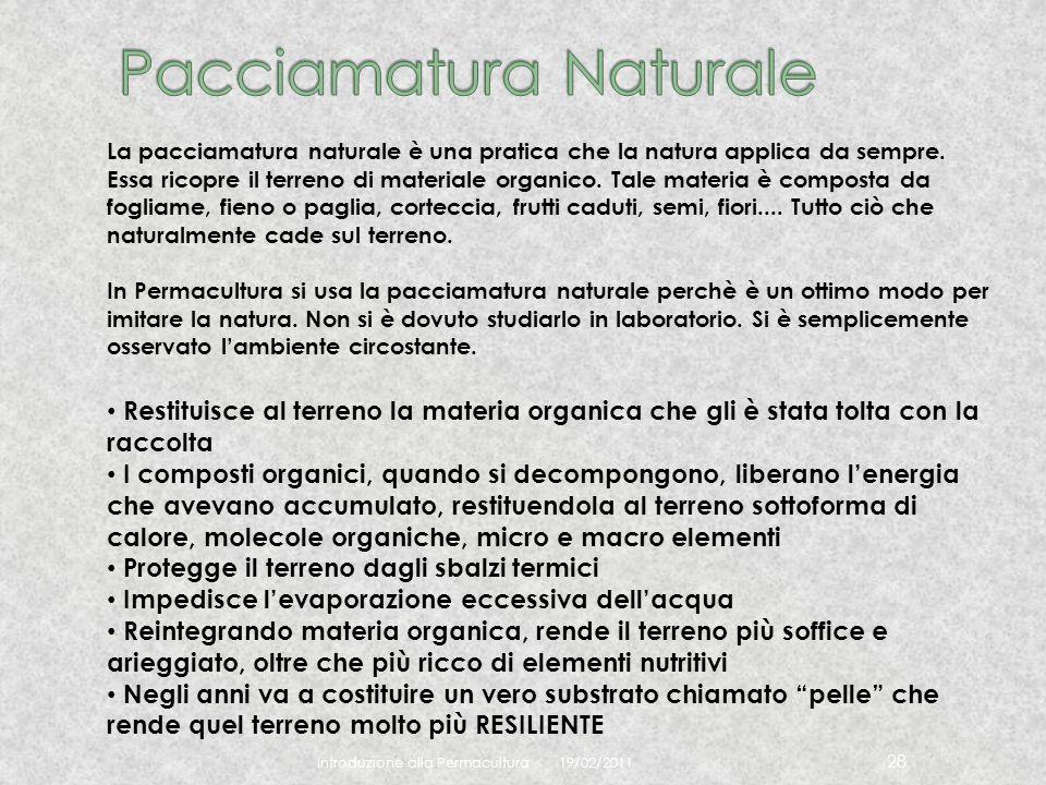 19/02/2011 Introduzione alla Permacultura 28 La pacciamatura naturale è una pratica che la natura applica da sempre. Essa ricopre il terreno di materi