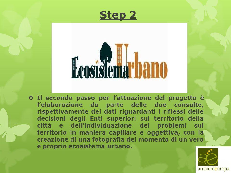 Step 2 Il secondo passo per lattuazione del progetto è lelaborazione da parte delle due consulte, rispettivamente dei dati riguardanti i riflessi dell