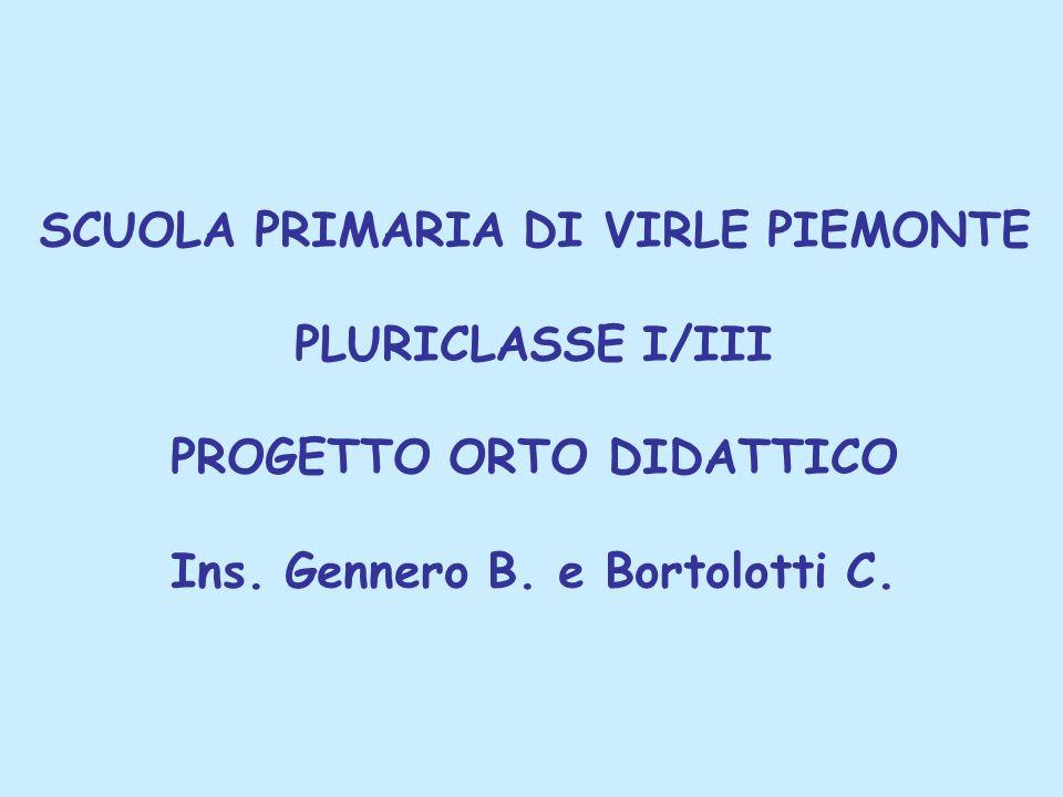 SCUOLA PRIMARIA DI VIRLE PIEMONTE PLURICLASSE I/III PROGETTO ORTO DIDATTICO Ins.
