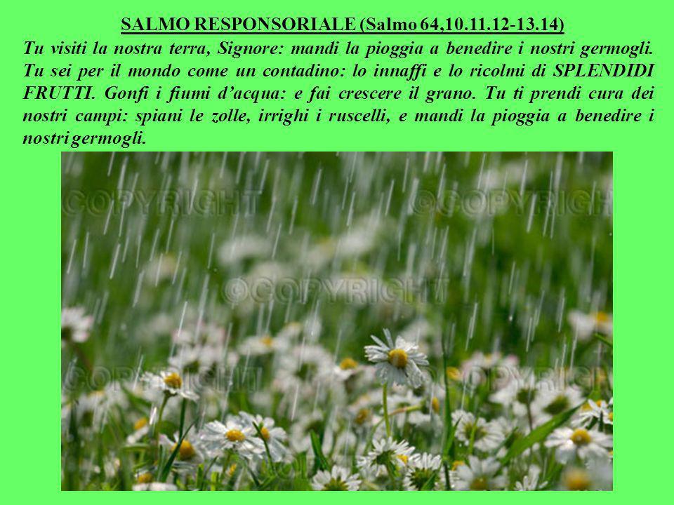 SALMO RESPONSORIALE (Salmo 64,10.11.12-13.14) Tu visiti la nostra terra, Signore: mandi la pioggia a benedire i nostri germogli.
