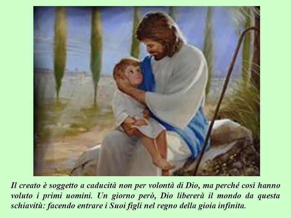 Il creato è soggetto a caducità non per volontà di Dio, ma perché così hanno voluto i primi uomini.