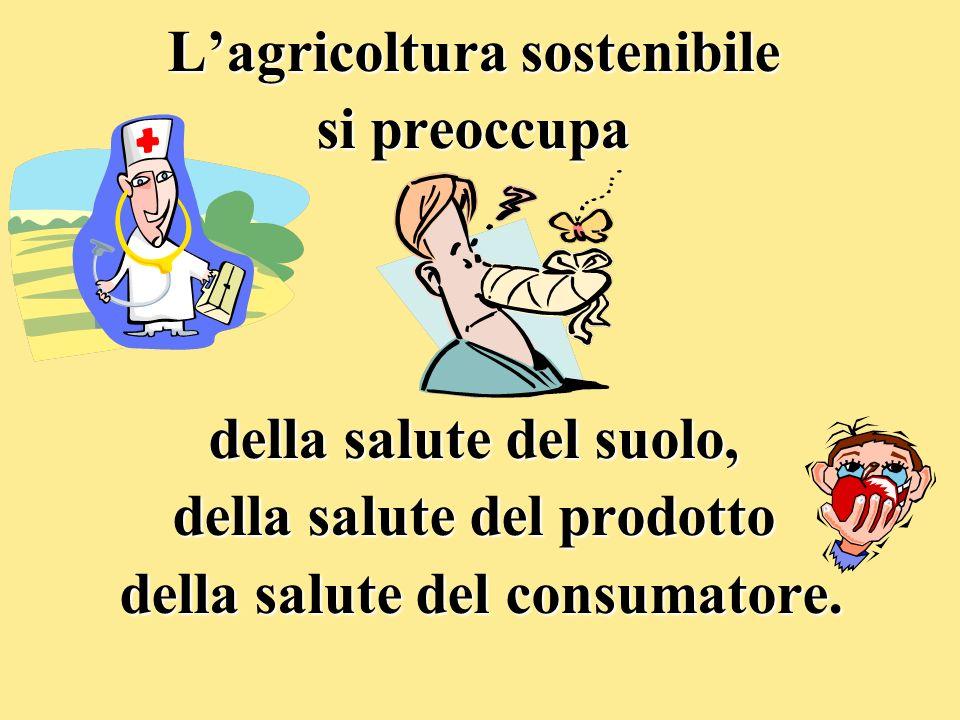 Lagricoltura sostenibile si preoccupa della salute del suolo, della salute del prodotto della salute del consumatore. della salute del consumatore.