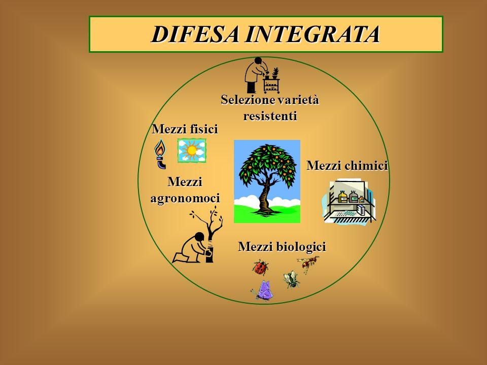 Mezzi biologici Mezzi agronomoci Mezzi chimici Mezzi fisici Selezione varietà resistenti DIFESA INTEGRATA