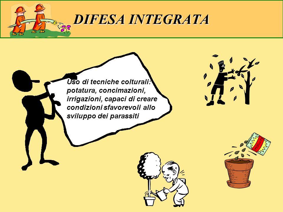 Uso di tecniche colturali: potatura, concimazioni, irrigazioni, capaci di creare condizioni sfavorevoli allo sviluppo dei parassiti DIFESA INTEGRATA