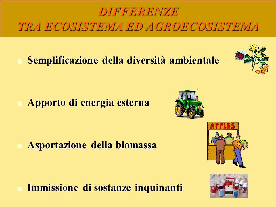 DIFFERENZE TRA ECOSISTEMA ED AGROECOSISTEMA Semplificazione della diversità ambientale Semplificazione della diversità ambientale Apporto di energia e