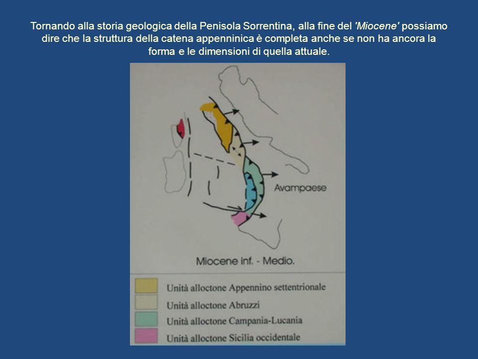 Tornando alla storia geologica della Penisola Sorrentina, alla fine del 'Miocene' possiamo dire che la struttura della catena appenninica è completa a