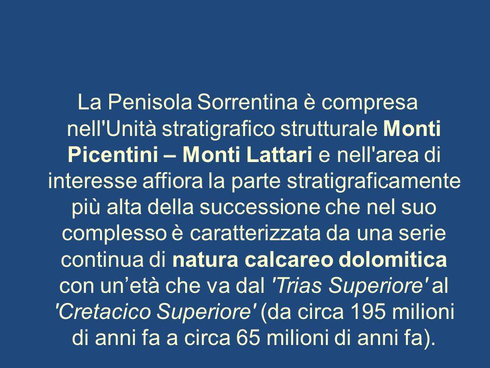 La Penisola Sorrentina è compresa nell'Unità stratigrafico strutturale Monti Picentini – Monti Lattari e nell'area di interesse affiora la parte strat