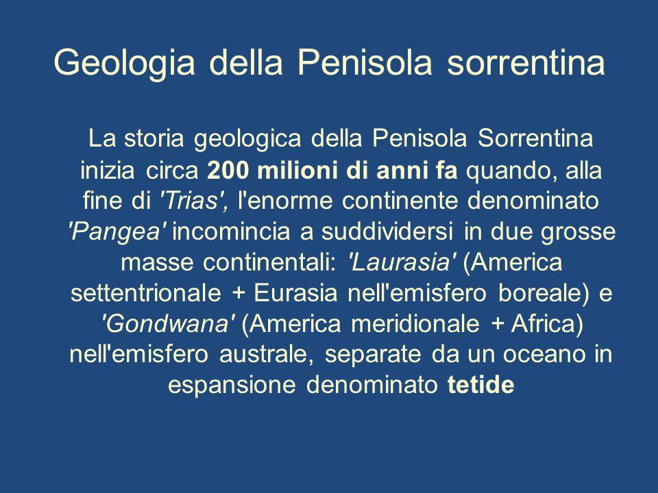 Geologia della Penisola sorrentina La storia geologica della Penisola Sorrentina inizia circa 200 milioni di anni fa quando, alla fine di 'Trias', l'e
