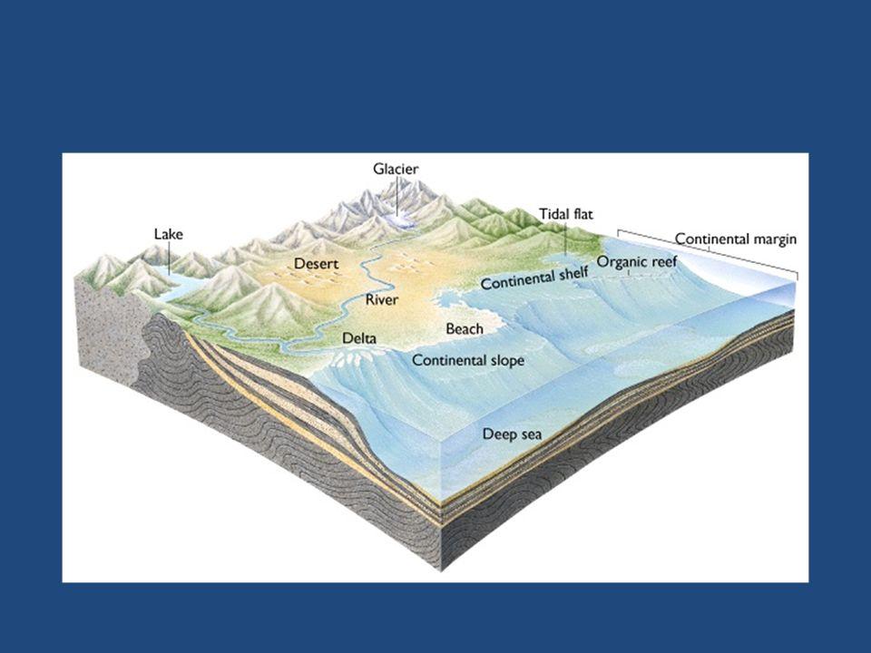 In questo particolare ambiente marino, la sedimentazione organica continua per tutto il Cretacico (da 140 a 65 milioni di anni fa), accumulando una massa enorme di sedimenti, che attualmente formano una serie calcareo-dolomitica continua, con potenza di almeno 4.000 metri.