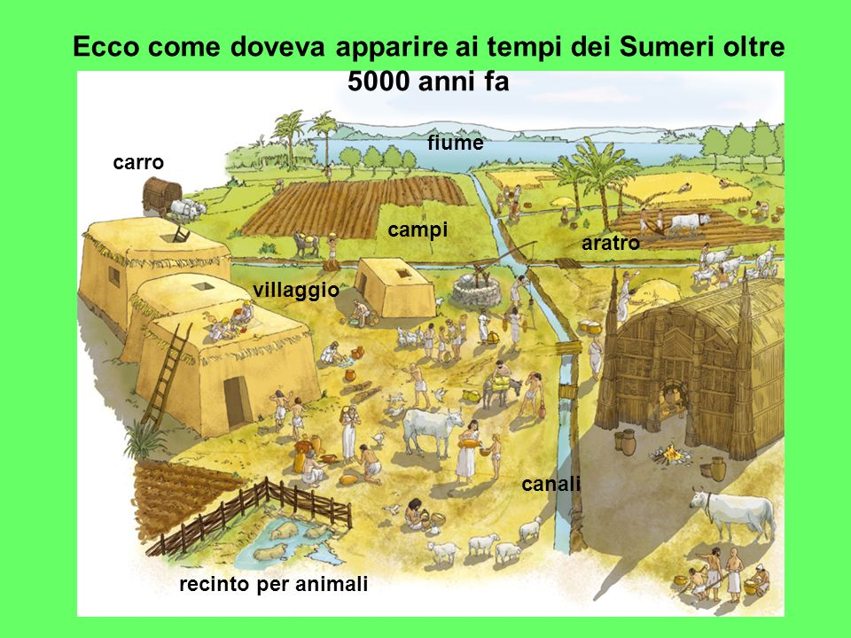Ecco come doveva apparire ai tempi dei Sumeri oltre 5000 anni fa fiume canali campi villaggio carro aratro recinto per animali