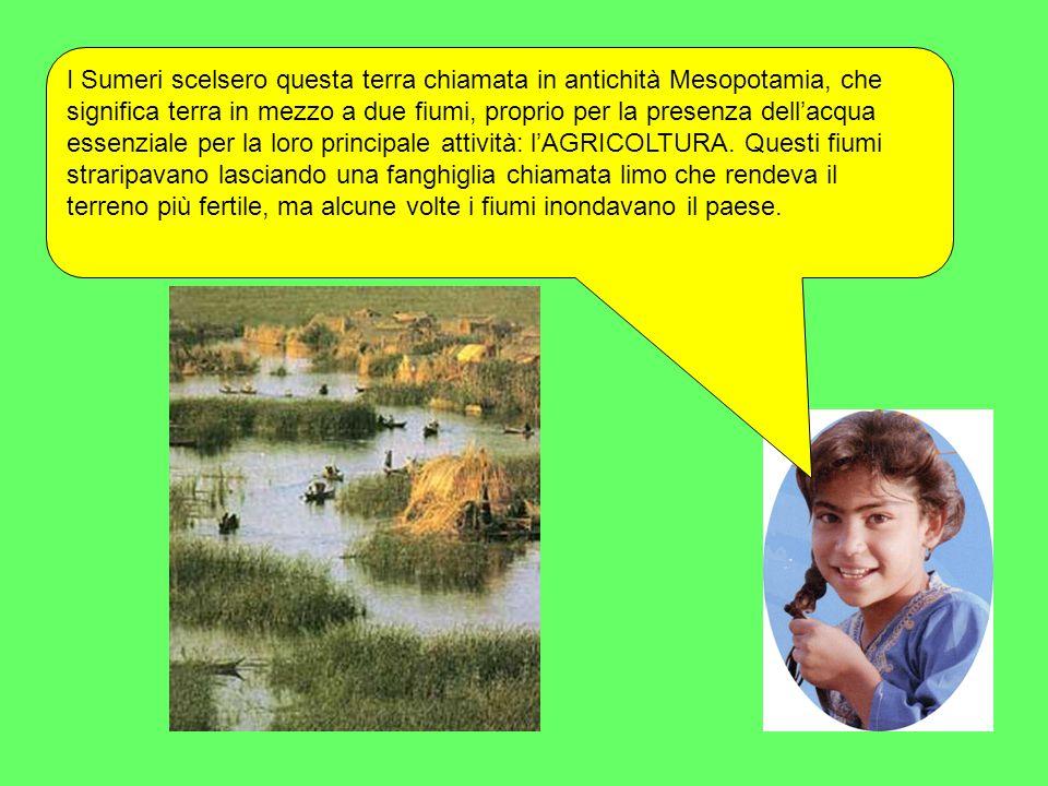 I Sumeri scelsero questa terra chiamata in antichità Mesopotamia, che significa terra in mezzo a due fiumi, proprio per la presenza dellacqua essenzia
