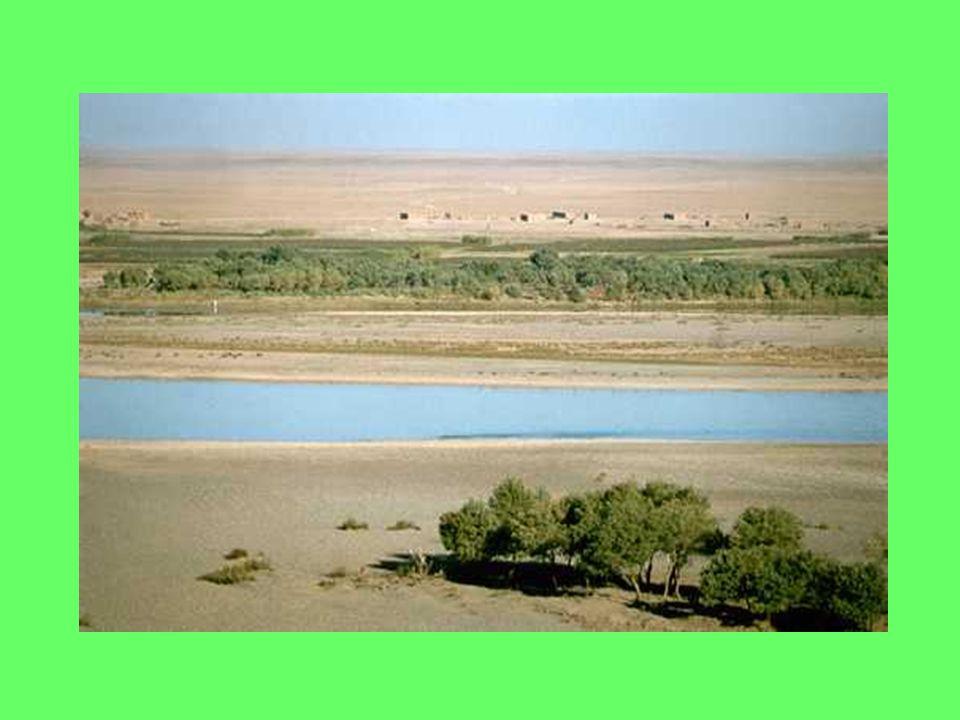 I Sumeri vivevano in villaggi che piano piano si trasformarono in città.