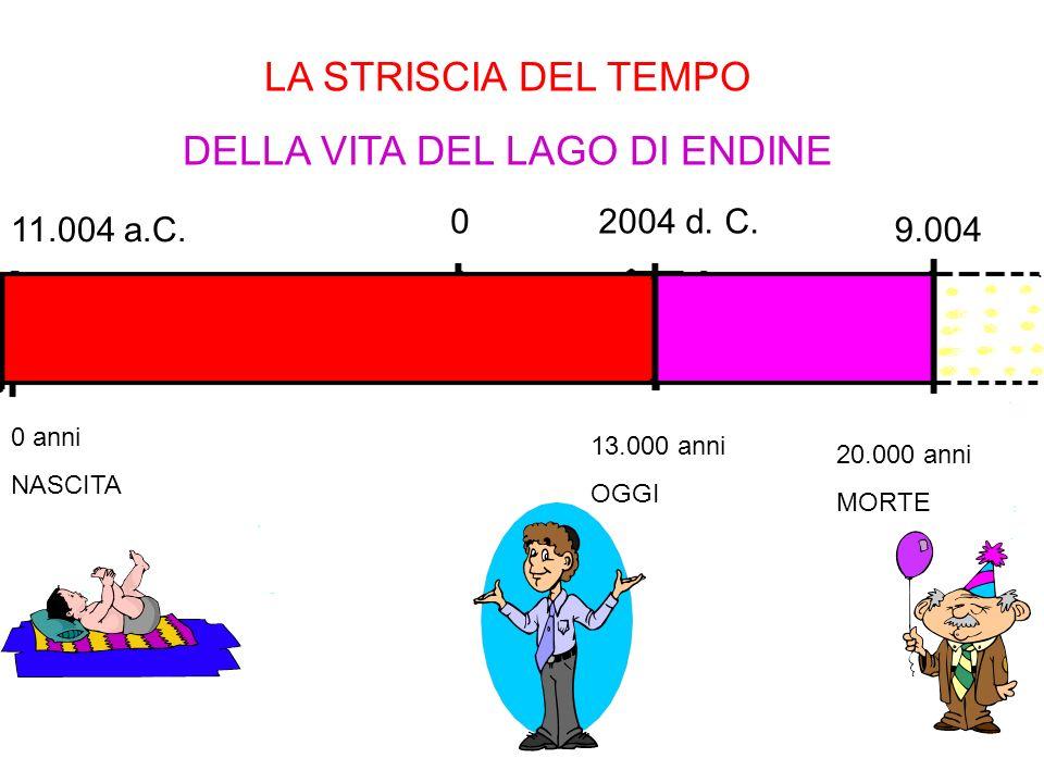 Classe quinta Scuola elementare Endine Martiri a.S 2003 2004