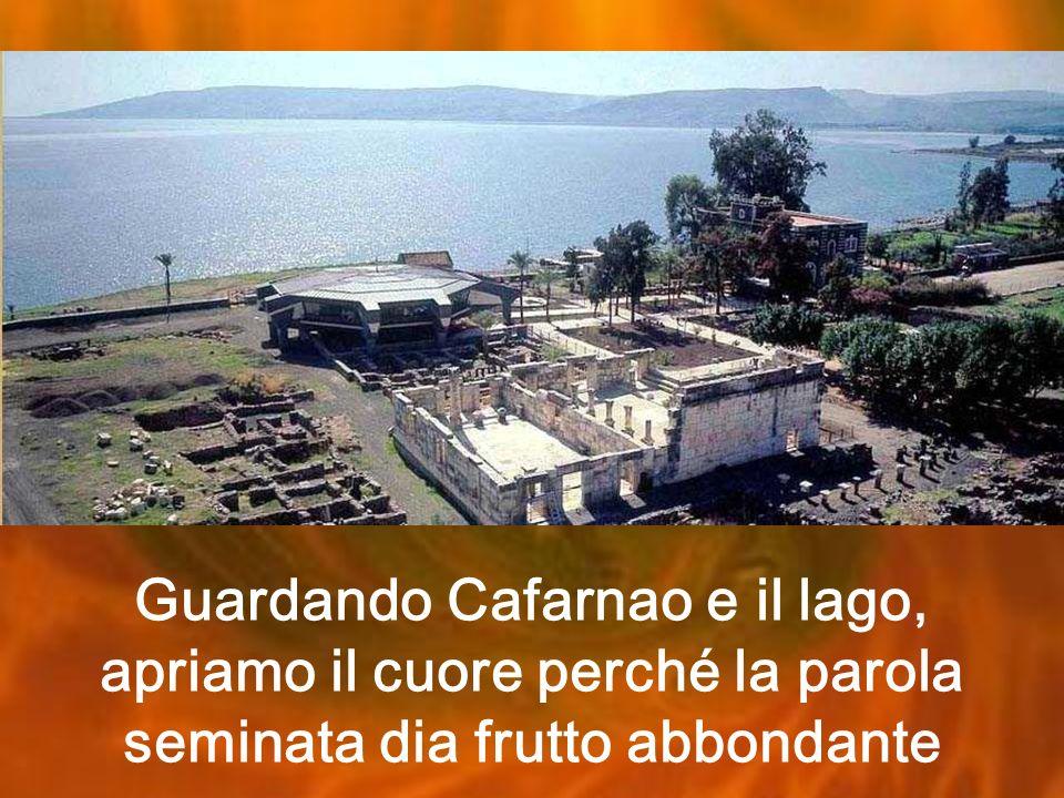 Guardando Cafarnao e il lago, apriamo il cuore perché la parola seminata dia frutto abbondante