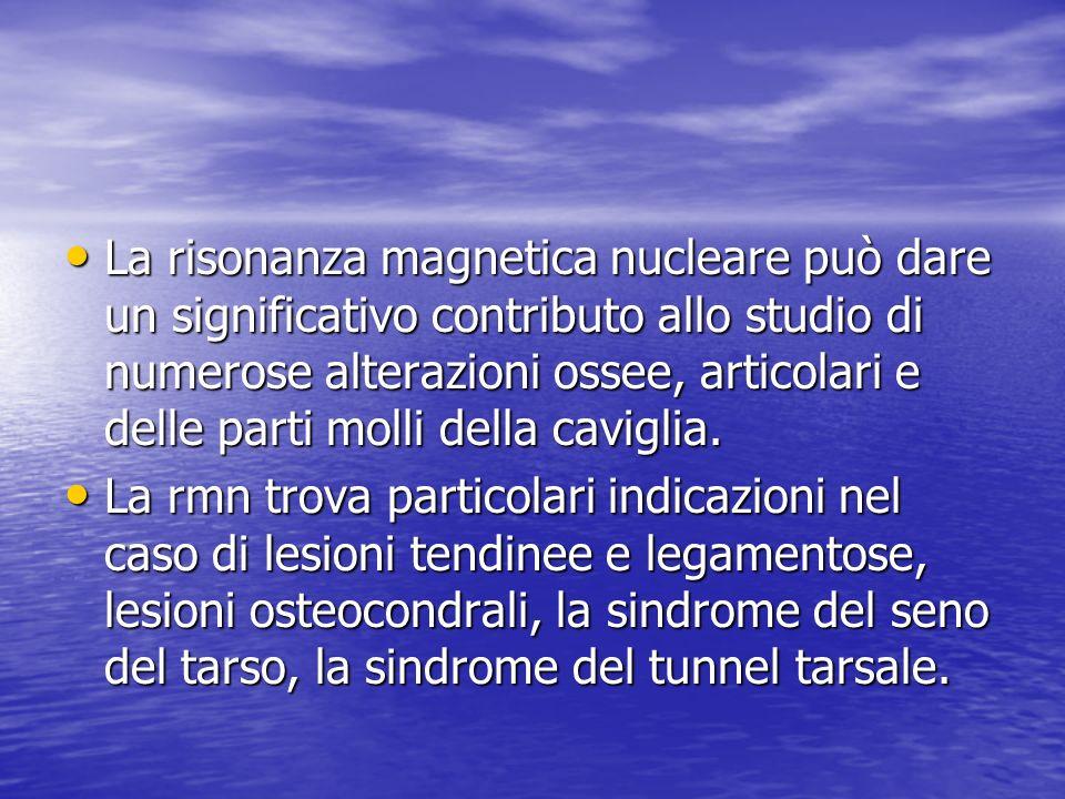 La risonanza magnetica nucleare può dare un significativo contributo allo studio di numerose alterazioni ossee, articolari e delle parti molli della c