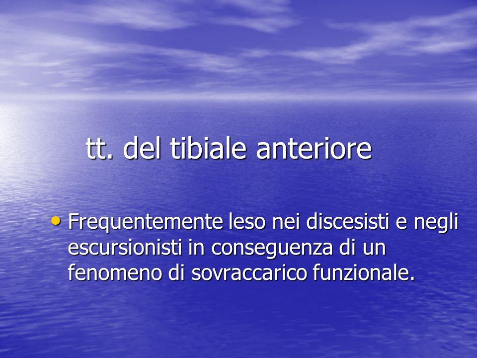 tt. del tibiale anteriore Frequentemente leso nei discesisti e negli escursionisti in conseguenza di un fenomeno di sovraccarico funzionale. Frequente