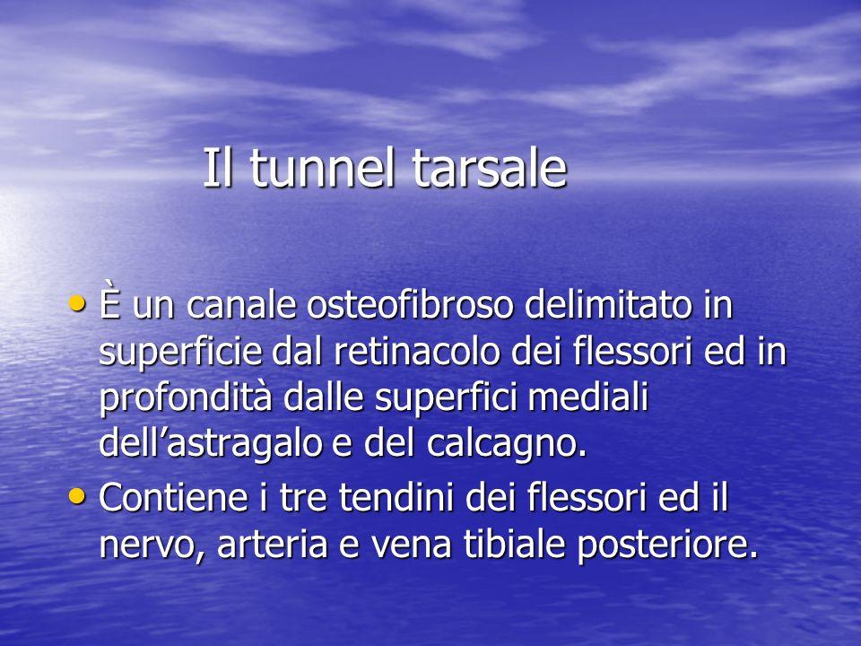 Il tunnel tarsale È un canale osteofibroso delimitato in superficie dal retinacolo dei flessori ed in profondità dalle superfici mediali dellastragalo