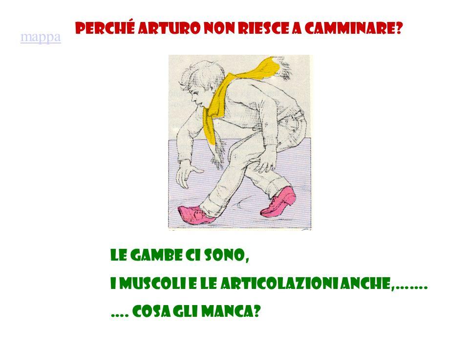 Perché Arturo non riesce a camminare? Le gambe ci sono, i muscoli e le articolazioni anche,……. …. Cosa gli manca? mappa