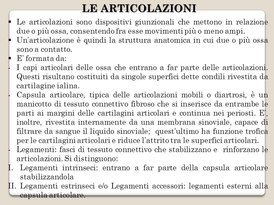 LE ARTICOLAZIONI Le articolazioni sono dispositivi giunzionali che mettono in relazione due o più ossa, consentendo fra esse movimenti più o meno ampi