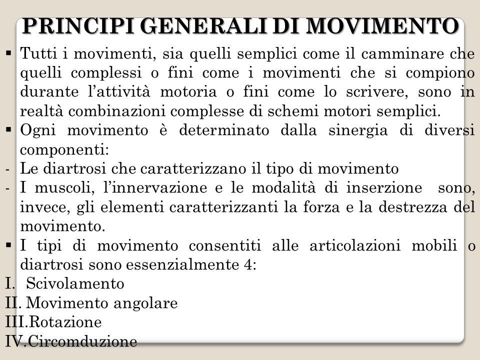 PRINCIPI GENERALI DI MOVIMENTO Tutti i movimenti, sia quelli semplici come il camminare che quelli complessi o fini come i movimenti che si compiono d