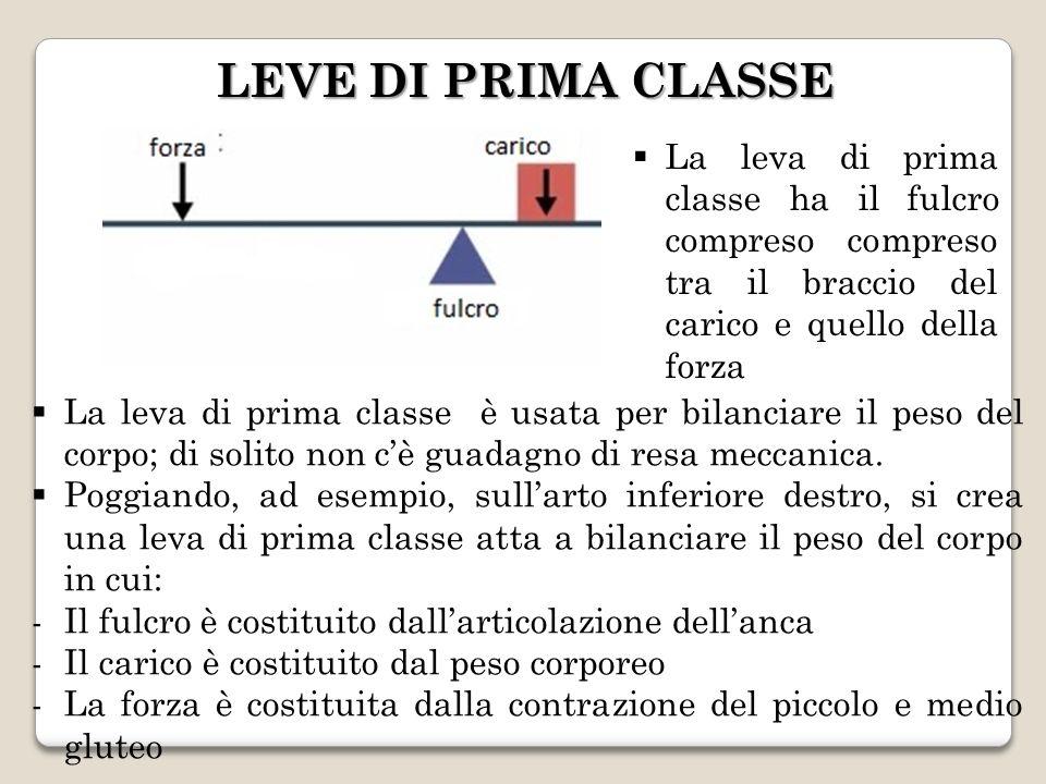 LEVE DI PRIMA CLASSE LEVE DI PRIMA CLASSE La leva di prima classe ha il fulcro compreso compreso tra il braccio del carico e quello della forza La lev