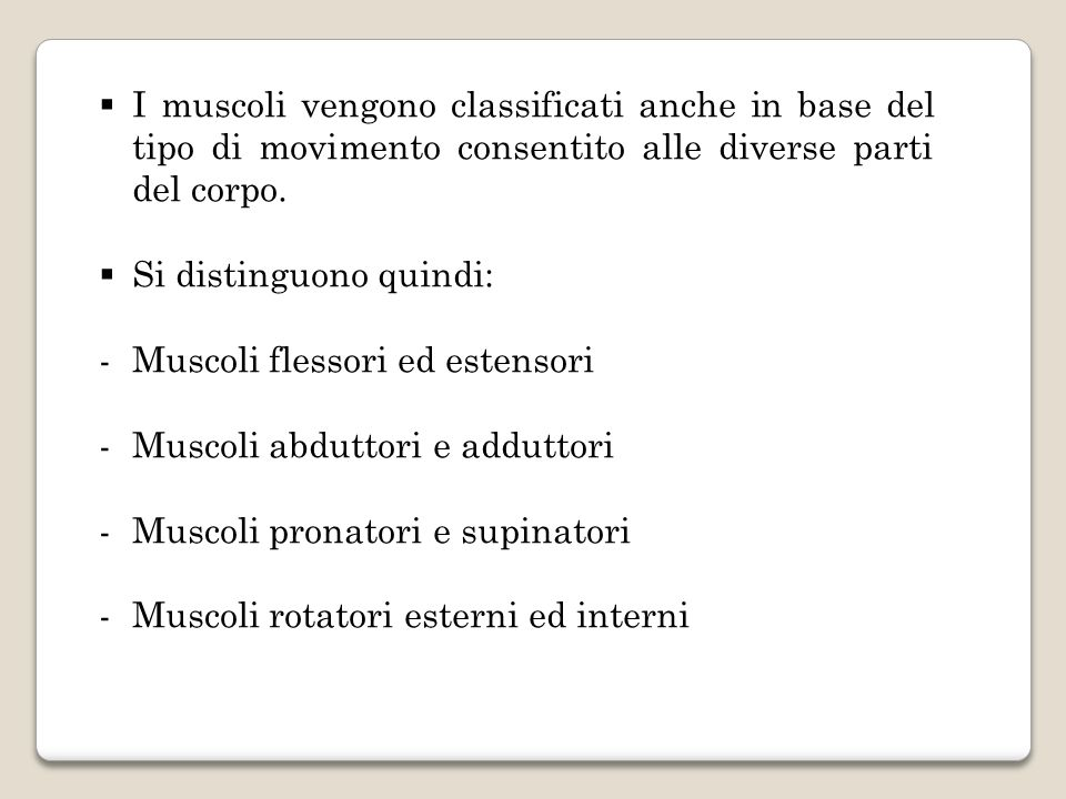 I muscoli vengono classificati anche in base del tipo di movimento consentito alle diverse parti del corpo. Si distinguono quindi: -Muscoli flessori e