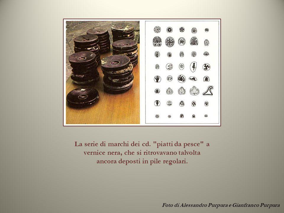 Foto di Alessandro Purpura e Gianfranco Purpura La serie di marchi dei cd.