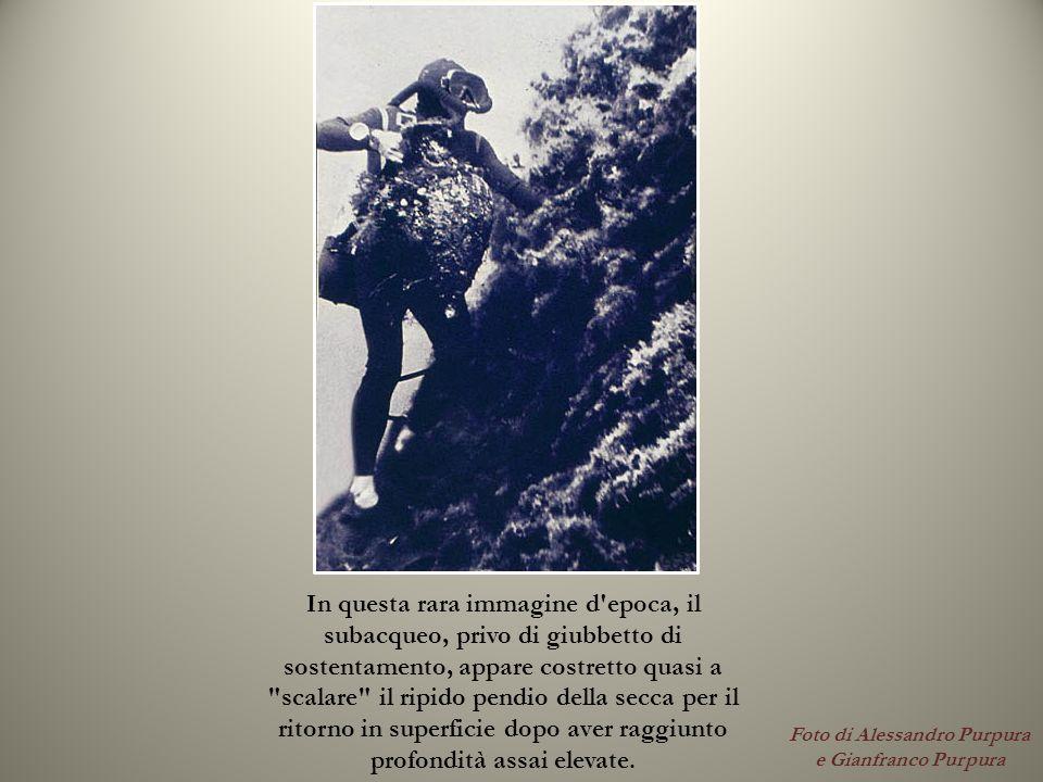 Foto di Alessandro Purpura e Gianfranco Purpura In questa rara immagine d'epoca, il subacqueo, privo di giubbetto di sostentamento, appare costretto q