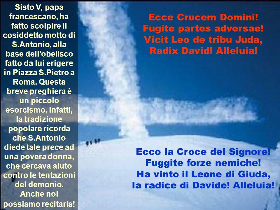 Sisto V, papa francescano, ha fatto scolpire il cosiddetto motto di S.Antonio, alla base dell'obelisco fatto da lui erigere in Piazza S.Pietro a Roma.