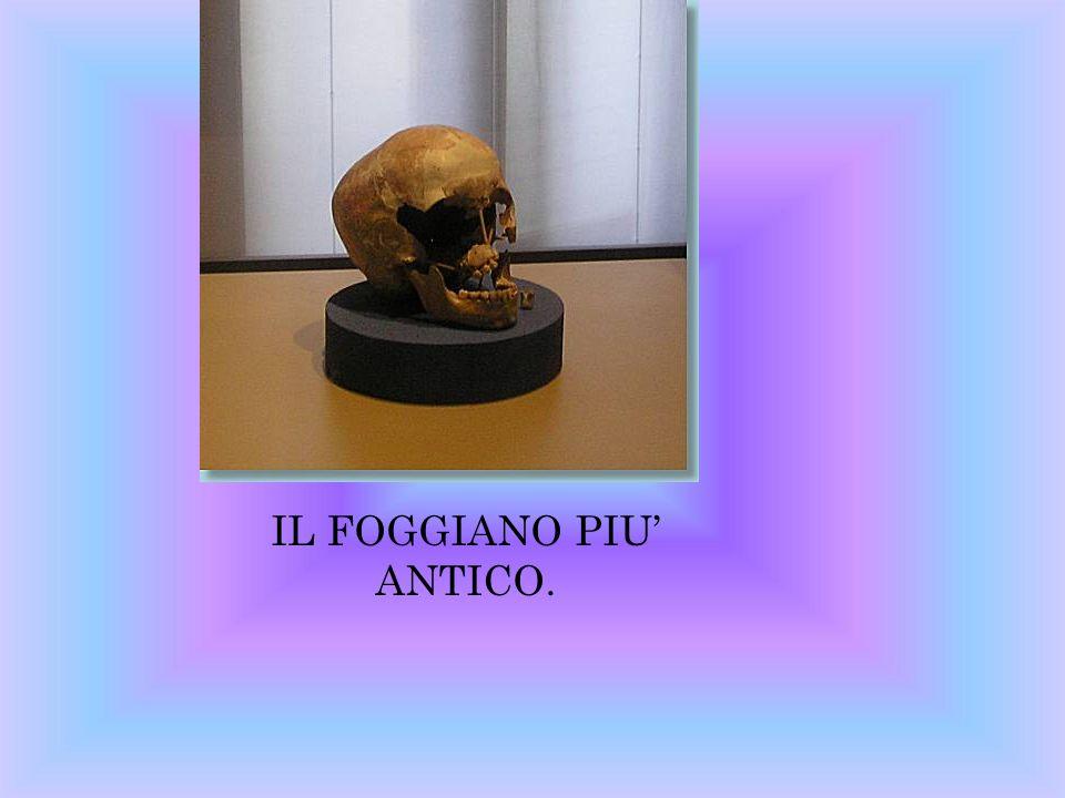 INSEDIAMENTO ABITATIVO DELLA DAUNIA XII SECOLO A.C.