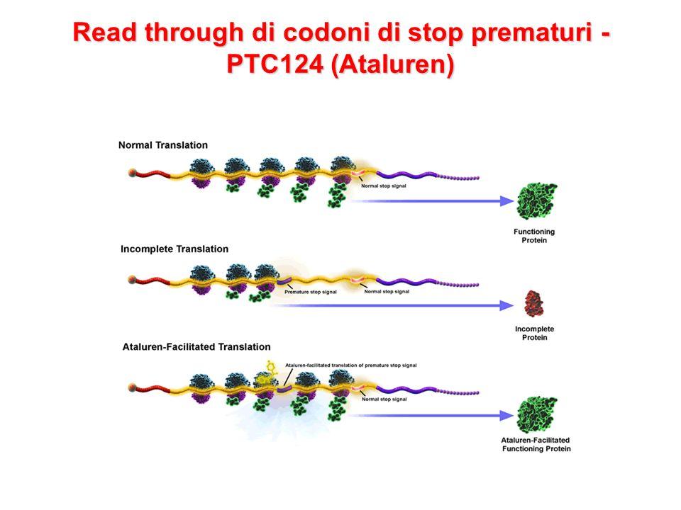 Read through di codoni di stop prematuri - PTC124 (Ataluren)