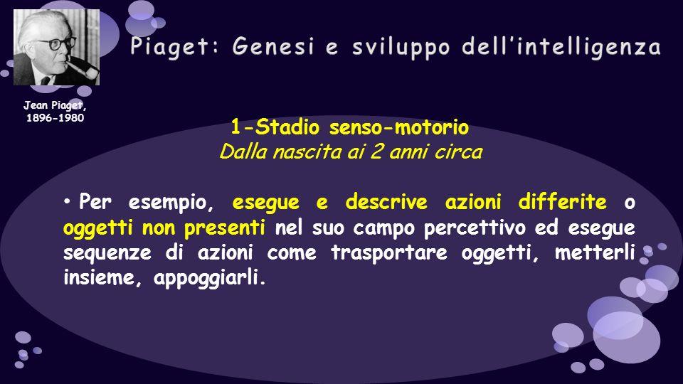 1-Stadio senso-motorio Dalla nascita ai 2 anni circa Per esempio, esegue e descrive azioni differite o oggetti non presenti nel suo campo percettivo e