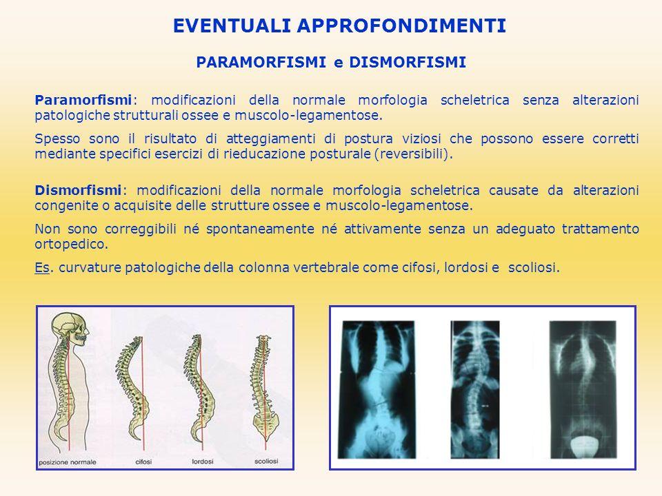 PARAMORFISMI e DISMORFISMI EVENTUALI APPROFONDIMENTI Paramorfismi: modificazioni della normale morfologia scheletrica senza alterazioni patologiche st