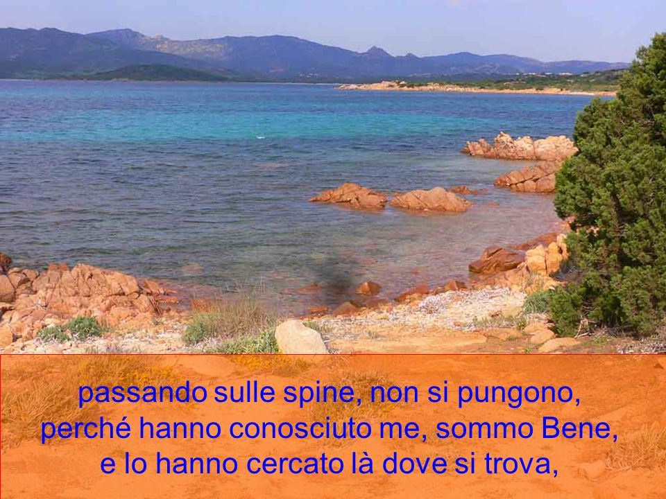 E dunque vero che costoro gustano la vita eterna, ricevendone il pegno in questa vita; stando nell acqua non s ammollano;