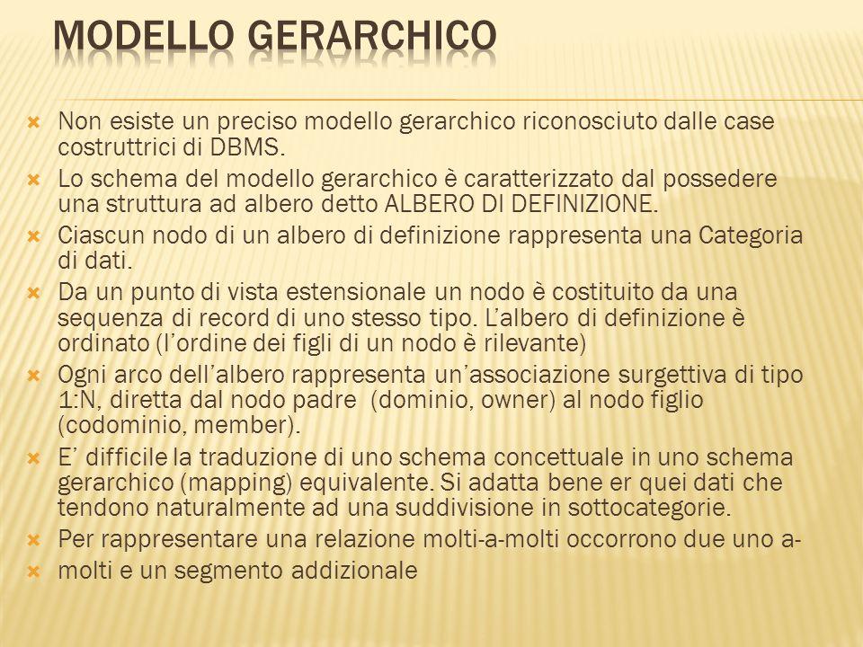 Non esiste un preciso modello gerarchico riconosciuto dalle case costruttrici di DBMS. Lo schema del modello gerarchico è caratterizzato dal possedere