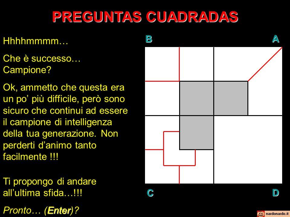 PREGUNTAS CUADRADAS SFIDA N°4: Mentalmente, dividi la zona BIANCA del quadrante D, in modo que risultino sette (7) parti della stessa dimensione.